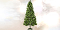DV Deals - Nordic Fir Christmas Tree logo